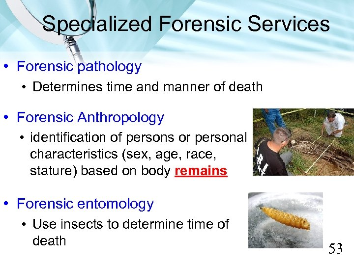 Specialized Forensic Services • Forensic pathology • Determines time and manner of death •