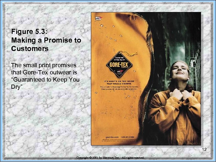 Figure 5. 3: Making a Promise to Customers The small print promises that Gore-Tex
