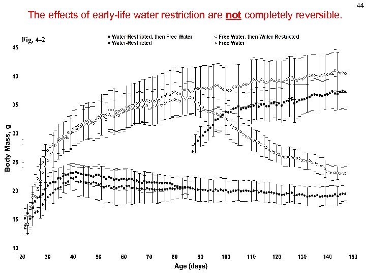 The effects of early-life water restriction are not completely reversible. 44