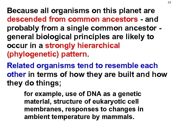 55 Because all organisms on this planet are descended from common ancestors - and