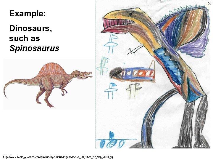 61 Example: Dinosaurs, such as Spinosaurus http: //www. biology. ucr. edu/people/faculty/Garland/Spinosaurus_30_Theo_29_Sep_2004. jpg