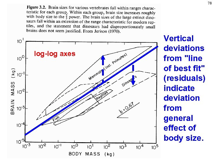 78 log-log axes Vertical deviations from