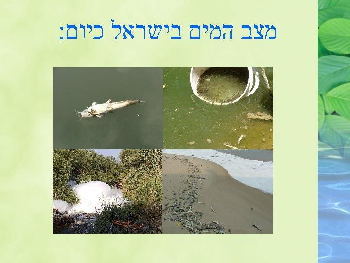מצב המים בישראל כיום:
