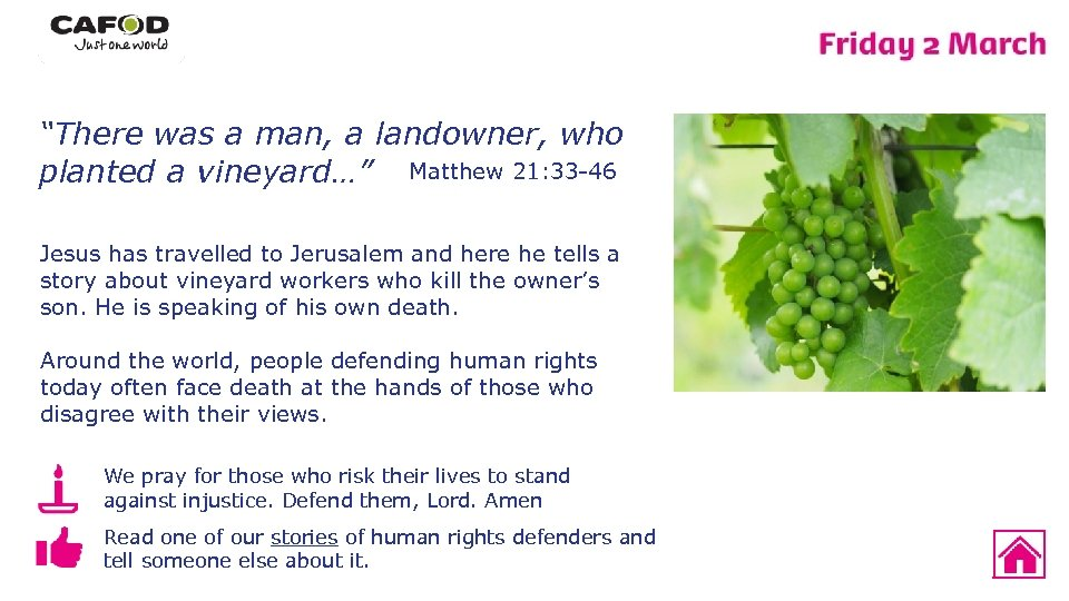 """""""There was a man, a landowner, who planted a vineyard…"""" Matthew 21: 33 -46"""
