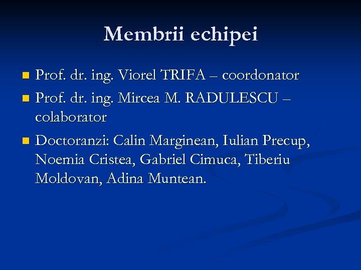 Membrii echipei Prof. dr. ing. Viorel TRIFA – coordonator n Prof. dr. ing. Mircea