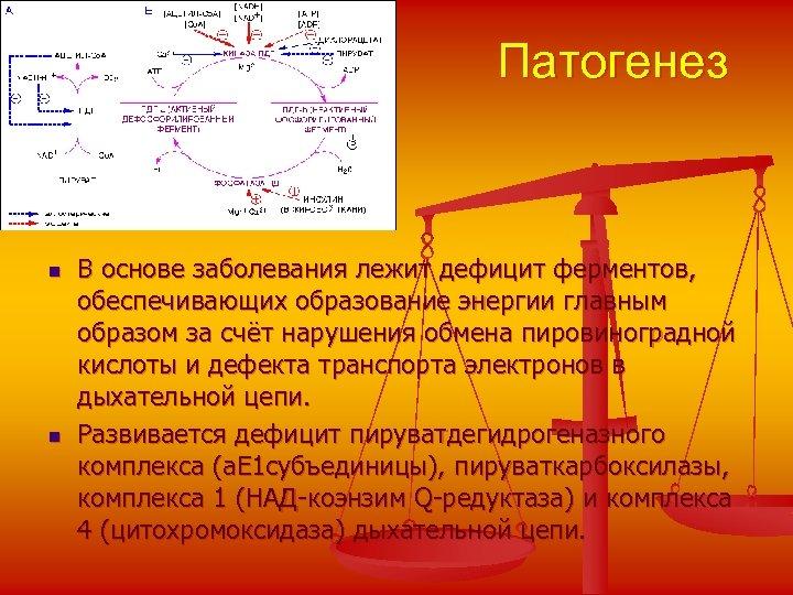 Патогенез n n В основе заболевания лежит дефицит ферментов, обеспечивающих образование энергии главным образом
