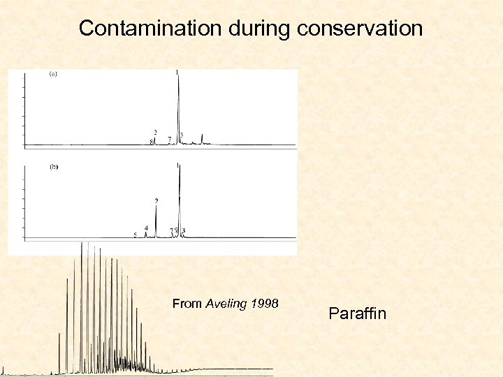 Contamination during conservation From Aveling 1998 Paraffin