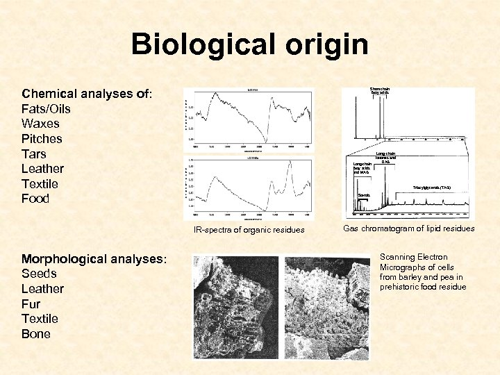 Biological origin Chemical analyses of: Fats/Oils Waxes Pitches Tars Leather Textile Food Short-chain fatty