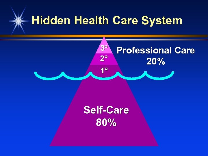 Hidden Health Care System 3 Professional Care 2 20% 1 Self-Care 80%