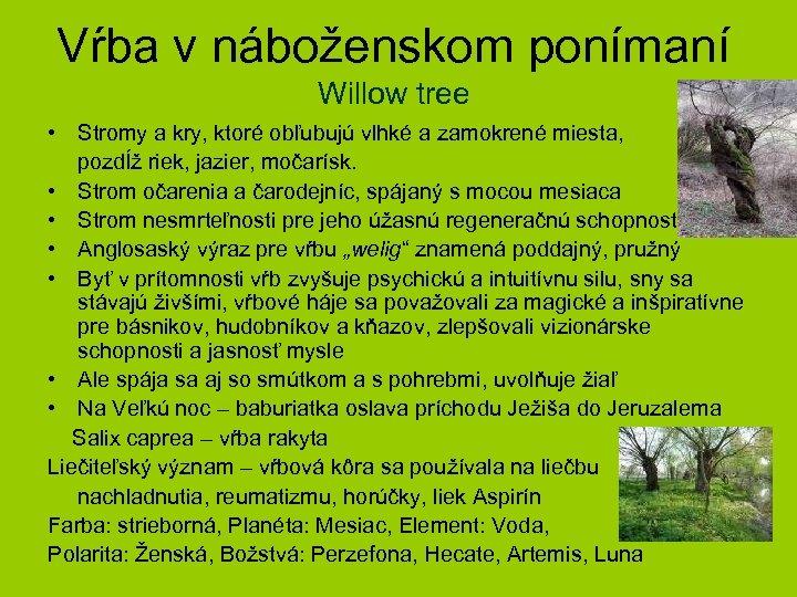 Vŕba v náboženskom ponímaní Willow tree • Stromy a kry, ktoré obľubujú vlhké a