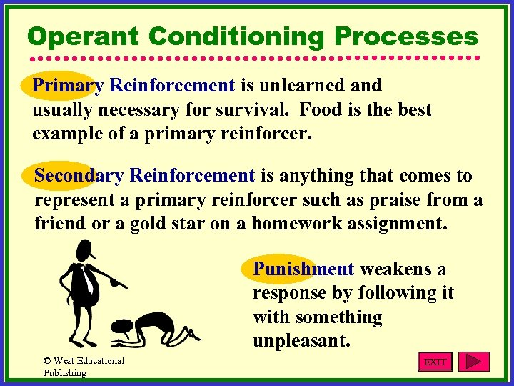 Operant Conditioning Processes Primary Reinforcement is unlearned and usually necessary for survival. Food is