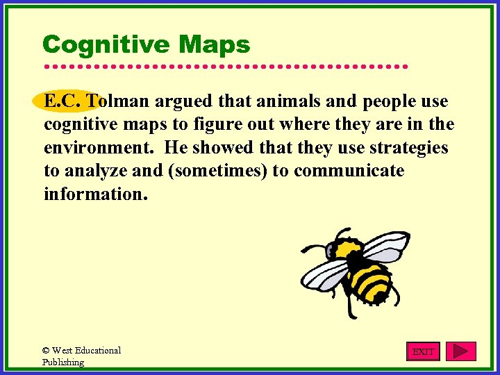 Cognitive Maps E. C. Tolman argued that animals and people use cognitive maps to