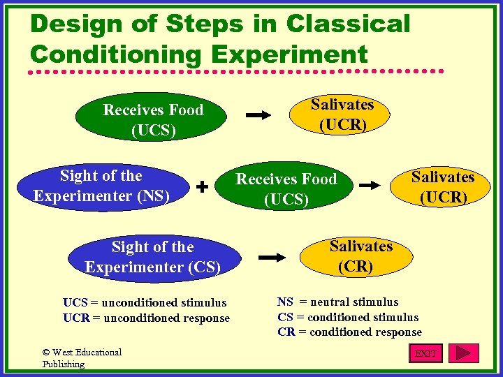 Design of Steps in Classical Conditioning Experiment Receives Food (UCS) Sight of the Experimenter