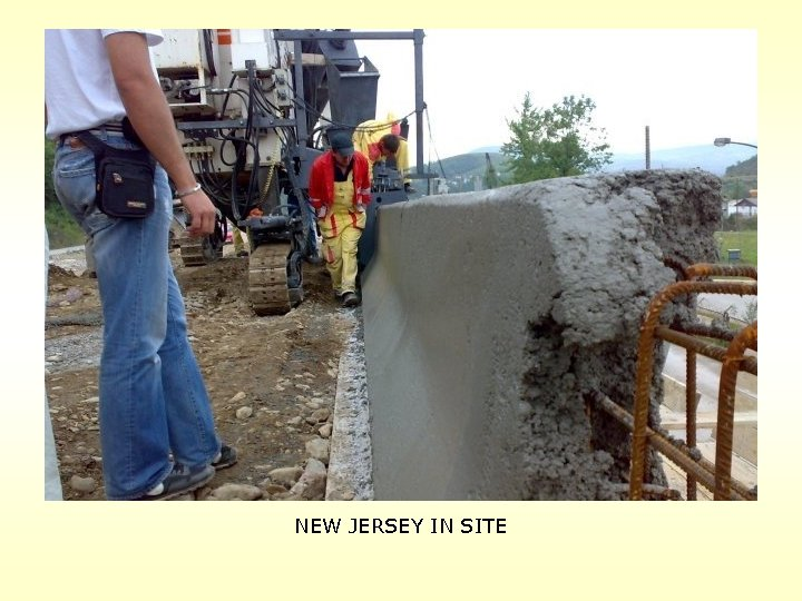 NEW JERSEY IN SITE