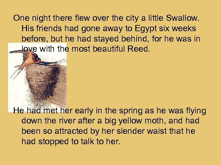 One night there flew over the city a little Swallow. His friends had gone