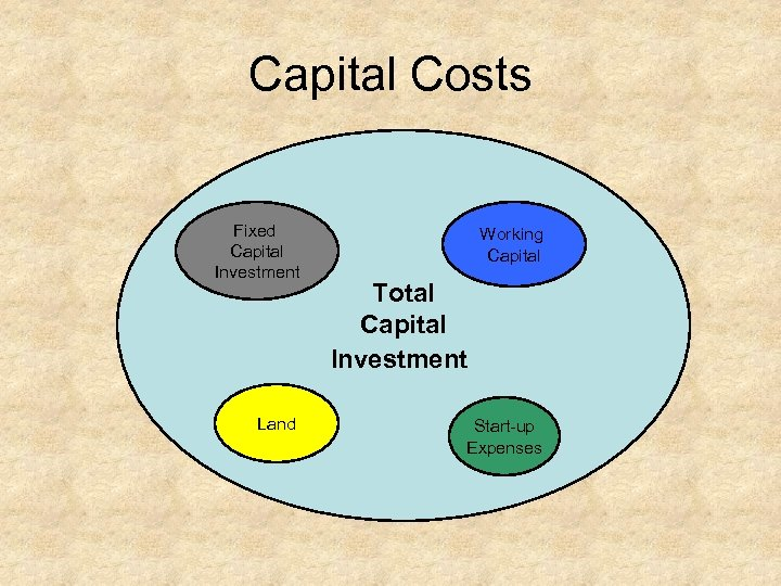 Capital Costs Fixed Capital Investment Land Working Capital Total Capital Investment Start up Expenses