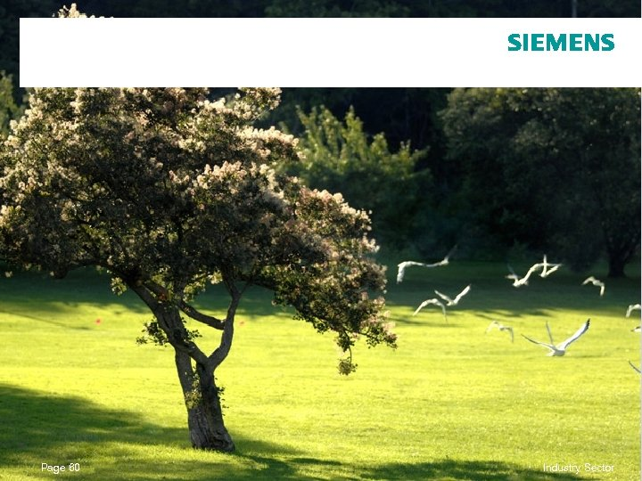 Page 60 © Siemens AG 2010. All Rights Reserved. Industry Sector