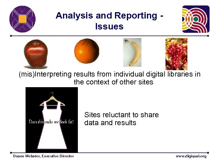 Analysis and Reporting Issues (mis)Interpreting results from individual digital libraries in the context of
