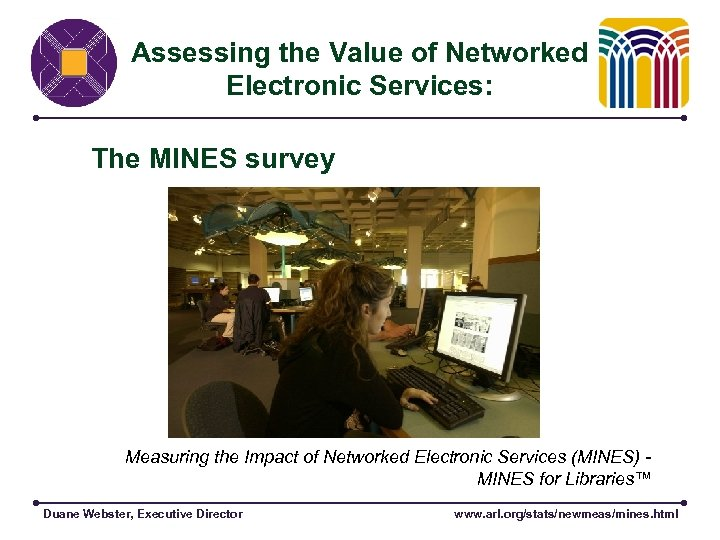 Assessing the Value of Networked Electronic Services: The MINES survey Measuring the Impact of