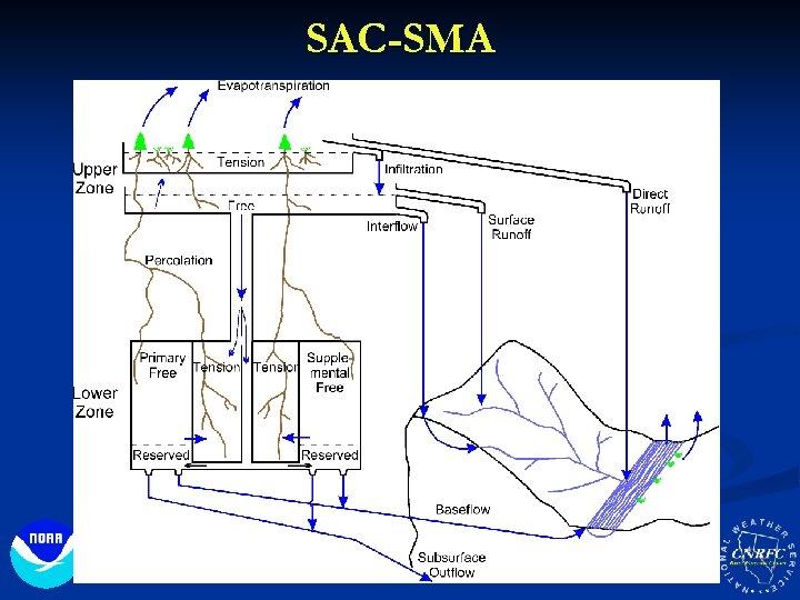 SAC-SMA