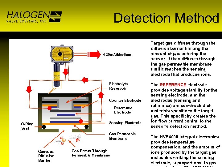 Detection Method TS 4000 Electronics 4 -20 m. A/Modbus Electrolyte Reservoir Counter Electrode Reference