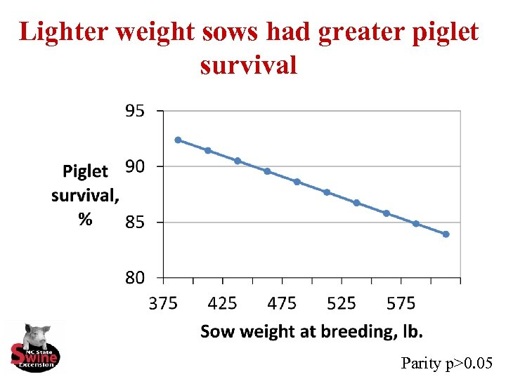 Lighter weight sows had greater piglet survival Parity p>0. 05