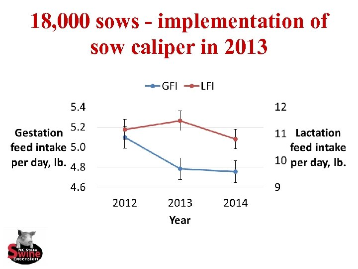18, 000 sows - implementation of sow caliper in 2013