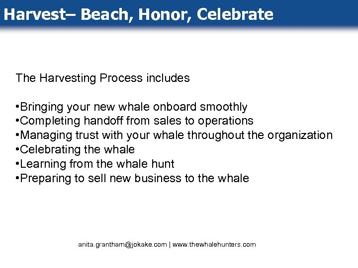 Harvest– Beach, Honor, Celebrate The Harvesting Process includes • Bringing your new whale onboard