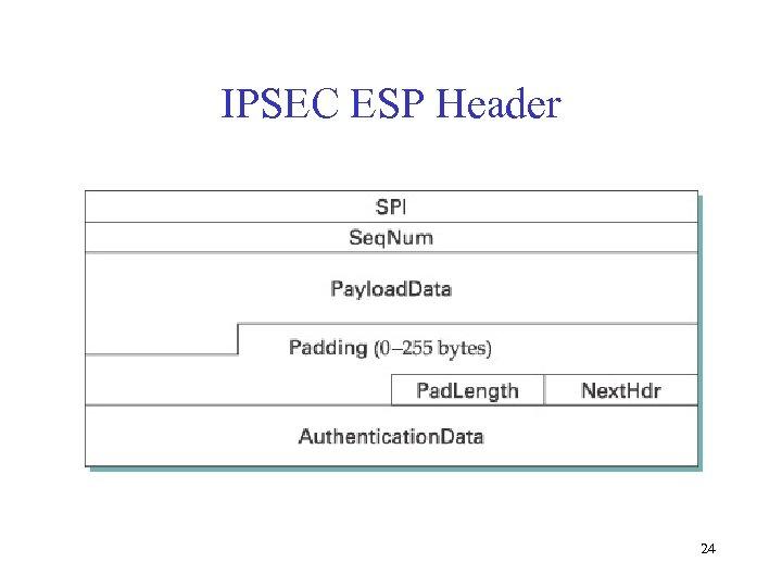 IPSEC ESP Header 24