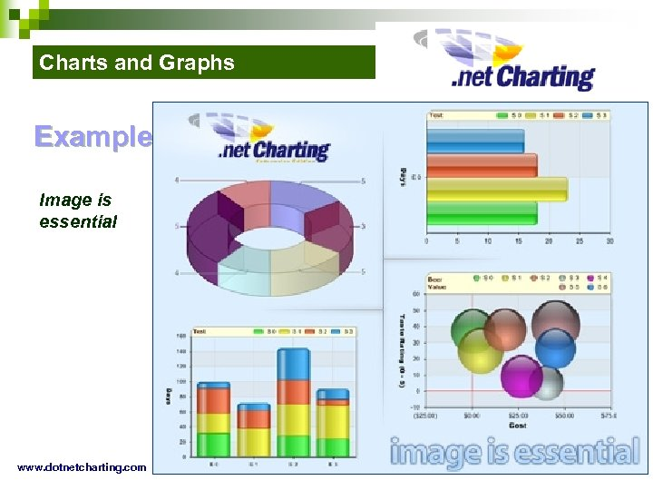 Charts and Graphs Example: Image is essential www. dotnetcharting. com