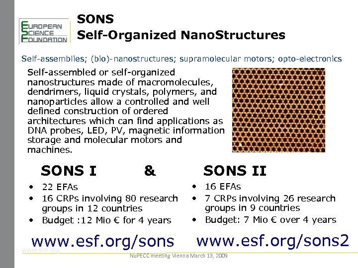 SONS Self-Organized Nano. Structures Self-assemblies; (bio)-nanostructures; supramolecular motors; opto-electronics Self-assembled or self-organized nanostructures made
