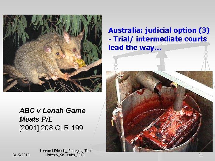 Australia: judicial option (3) - Trial/ intermediate courts lead the way… ABC v Lenah
