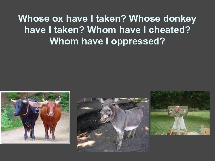 Whose ox have I taken? Whose donkey have I taken? Whom have I cheated?