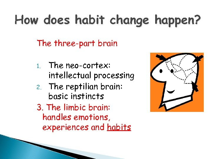 How does habit change happen? The three-part brain The neo-cortex: intellectual processing 2. The