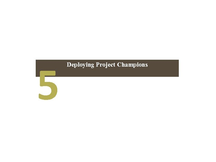 5 Deploying Project Champions