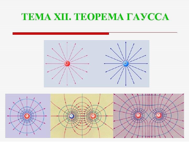 ТЕМА XII. ТЕОРЕМА ГАУССА