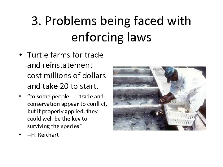 3. Problems being faced with enforcing laws • Turtle farms for trade and reinstatement