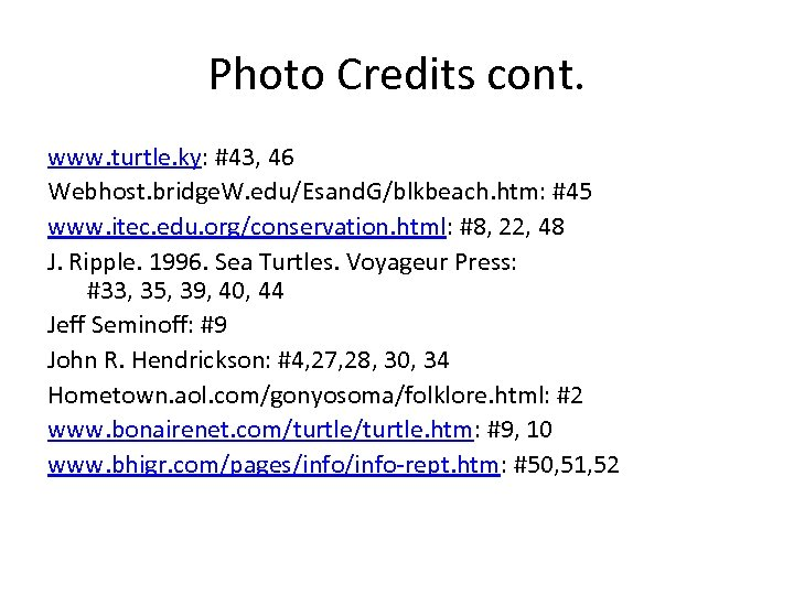 Photo Credits cont. www. turtle. ky: #43, 46 Webhost. bridge. W. edu/Esand. G/blkbeach. htm: