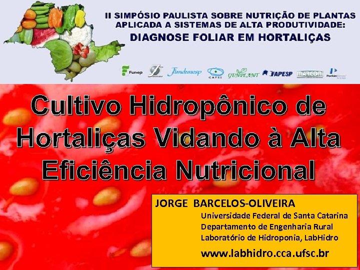 Cultivo Hidropônico de Hortaliças Vidando à Alta Eficiência Nutricional JORGE BARCELOS-OLIVEIRA Universidade Federal de