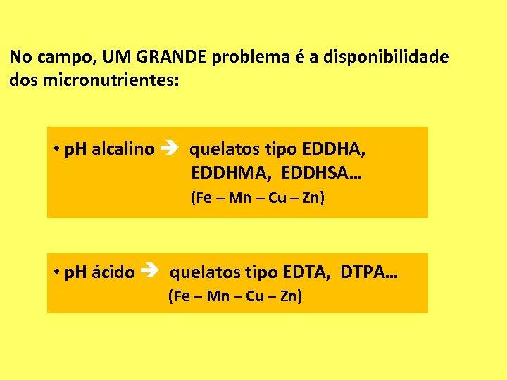 No campo, UM GRANDE problema é a disponibilidade dos micronutrientes: • p. H alcalino