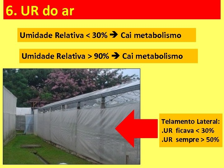 6. UR do ar Umidade Relativa < 30% Cai metabolismo Umidade Relativa > 90%