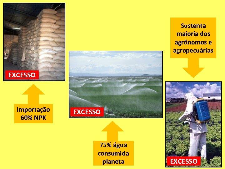Sustenta maioria dos agrônomos e agropecuárias EXCESSO Importação 60% NPK EXCESSO 75% água consumida
