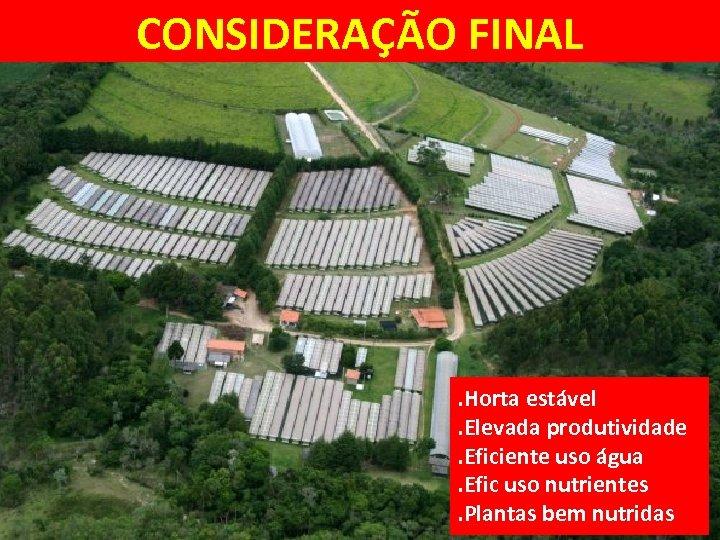 CONSIDERAÇÃO FINAL . Horta estável. Elevada produtividade. Eficiente uso água. Efic uso nutrientes. Plantas