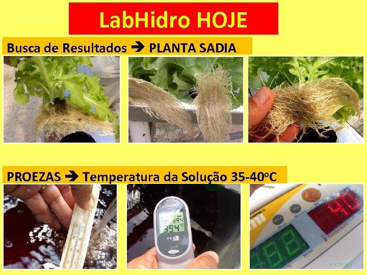 Lab. Hidro HOJE Busca de Resultados PLANTA SADIA PROEZAS Temperatura da Solução 35 -40