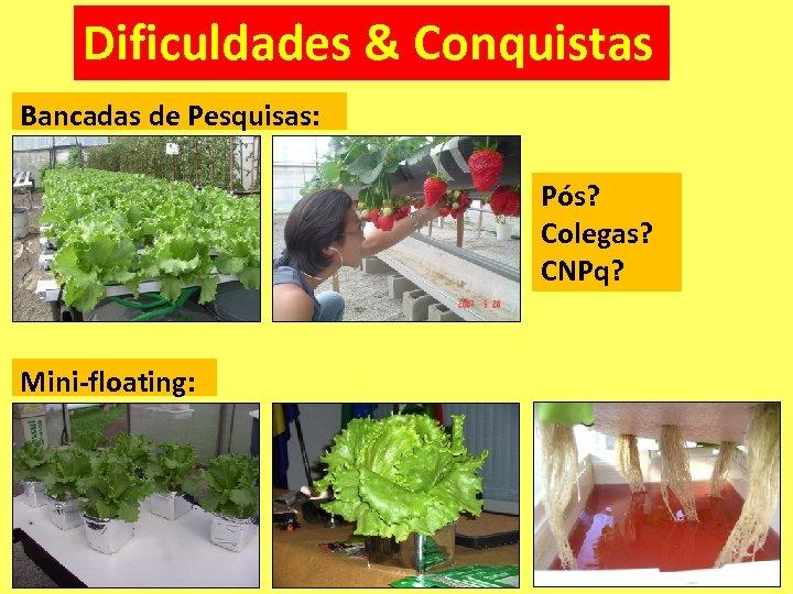Dificuldades & Conquistas Bancadas de Pesquisas: Pós? Colegas? CNPq? Mini-floating: