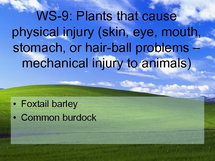 WS-9: Plants that cause physical injury (skin, eye, mouth, stomach, or hair-ball problems –
