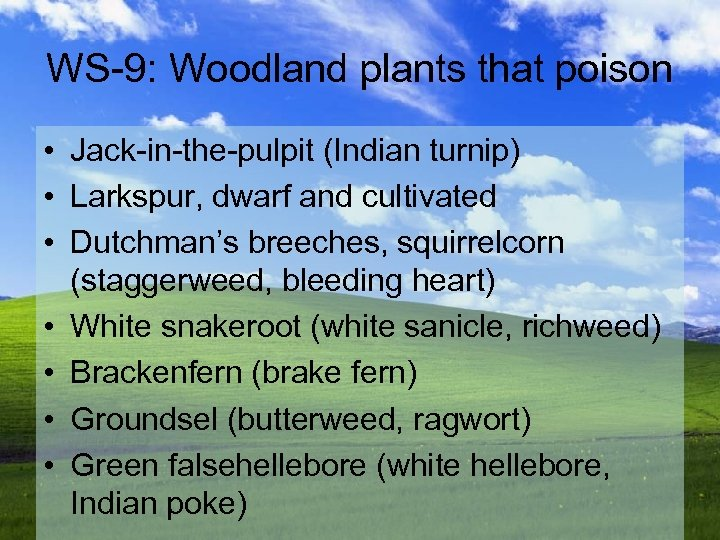 WS-9: Woodland plants that poison • Jack-in-the-pulpit (Indian turnip) • Larkspur, dwarf and cultivated