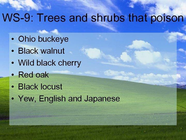 WS-9: Trees and shrubs that poison • • • Ohio buckeye Black walnut Wild