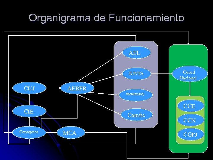 Organigrama de Funcionamiento AEL JUNTA CUJ Coord Nacional AEBPR Secretaria(o) CCE CIE Consejeros Comite