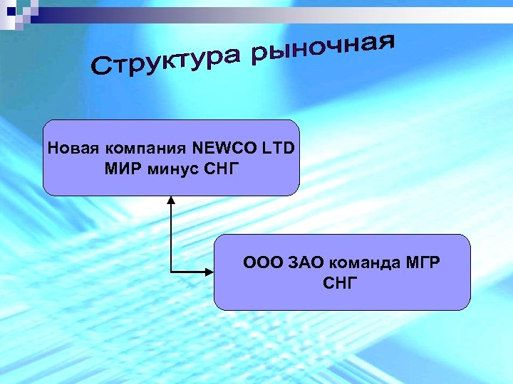 Новая компания NEWCO LTD МИР минус СНГ ООО ЗАО команда МГР СНГ